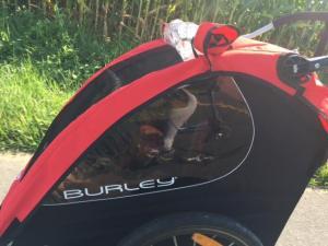 Burley Side