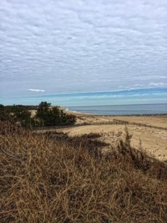 A beautiful look out point in the Cape Henlopen State Park